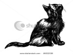 stock-photo-hand-drawn-cat-detailed-ink-drawing-of-a-cute-black-kitten-looking-up-46022338